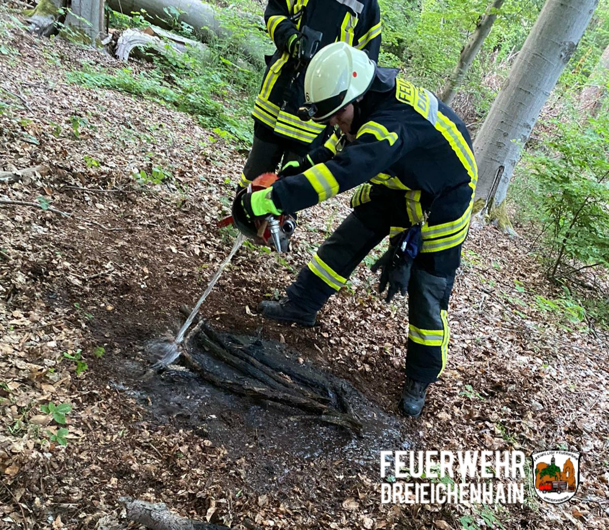 F Wald 1